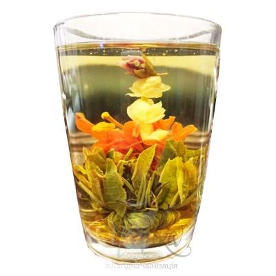 Жасминова квітка в лілеї ⭐ Зв'язаний чай
